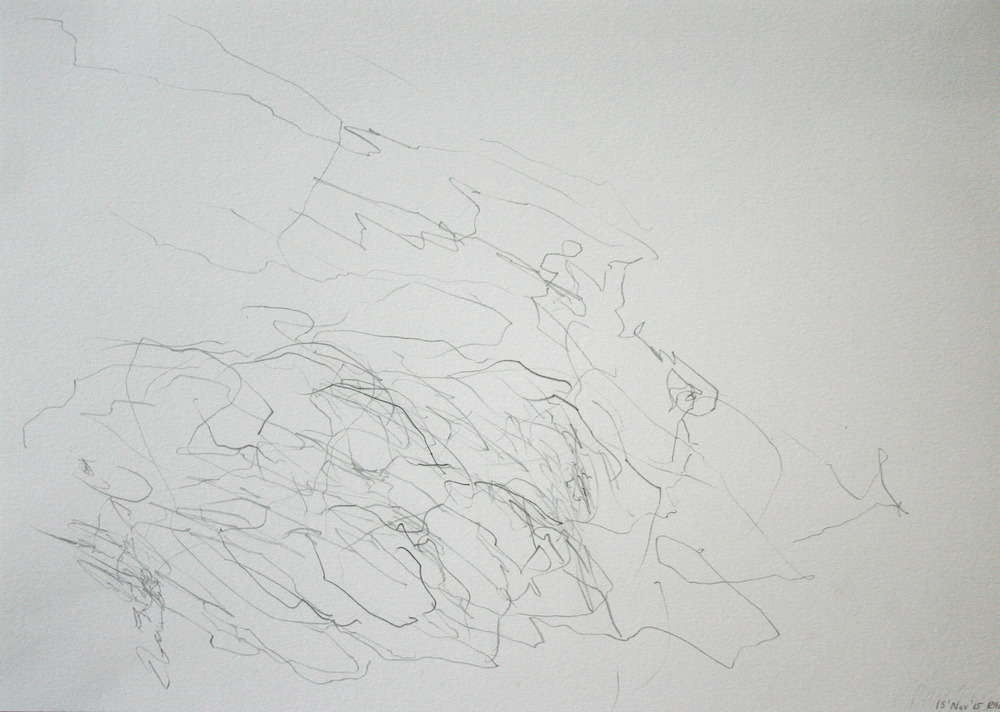 Left hand Drawing XI  November  2015  graphite on paper  21 x 30 cm