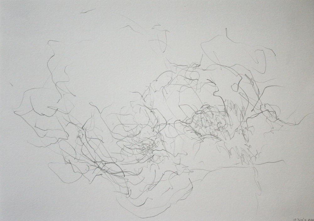 Left hand Drawing XII  November  2015  graphite on paper  21 x 30 cm
