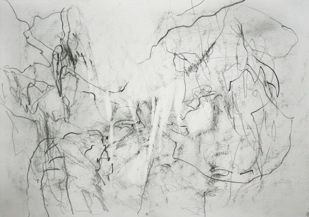 Left hand Drawing II  November  2015  graphite on paper  21 x 30 cm