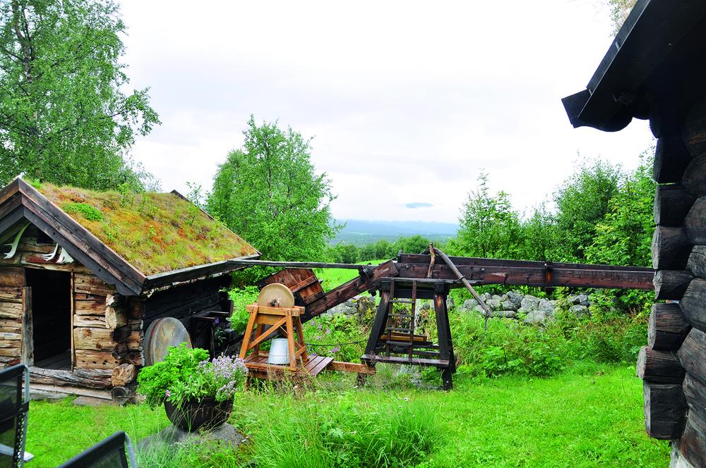 Her ser du en del av Svanningskvenna på familiestedet ROE på Lesjaskog.