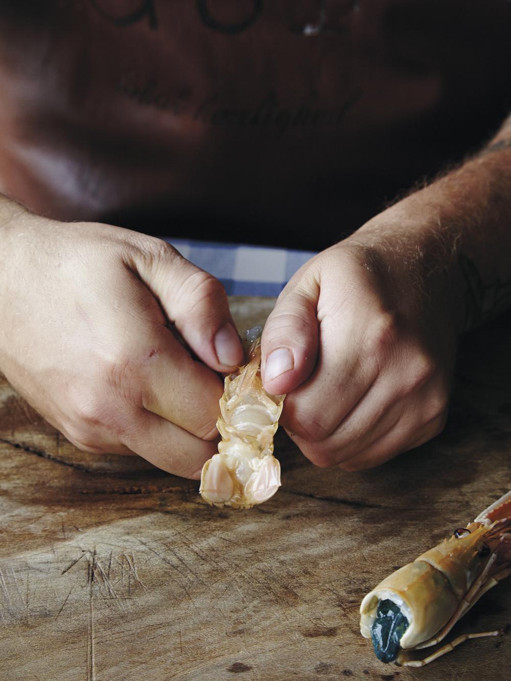 3. Snu halen og brekk skallet løs fra kjøttet.Dette skal gjøres fra toppen og nedover.
