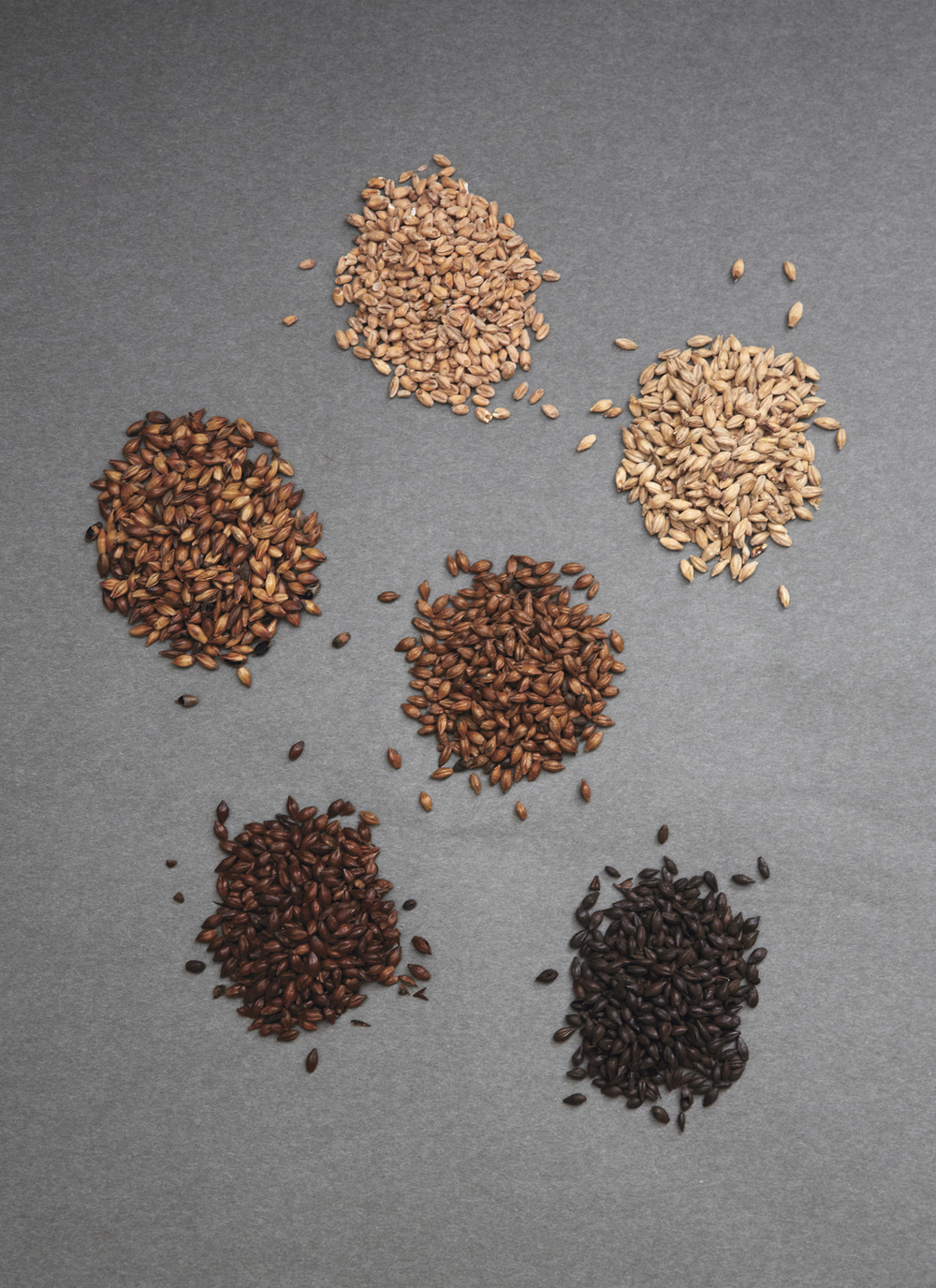 Fra øverst til nederst: Wheat Malt,Pilsner Malt,  Red Crystal Malt , Brown Malt , Pale Chocolate Malt , Roasted Barley