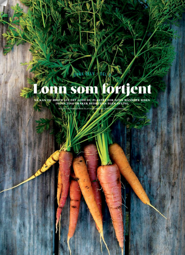 Fra Matmagasinet NORD, høsten 2014. Foto: Magnus Thorvik