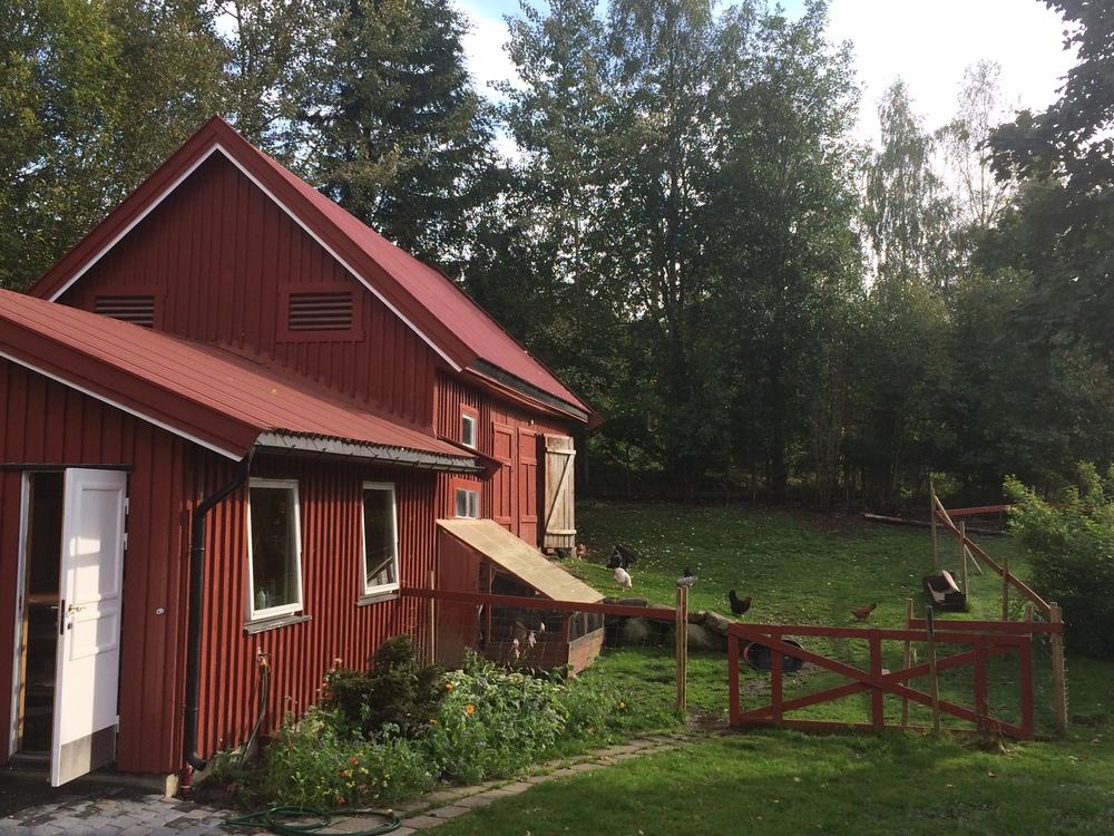 «Lizas Småbruk» er akkurat som man kan tenke seg av navnet,et lite rødt sted i skogholtet. Her er hønsehus og kurslokaler.