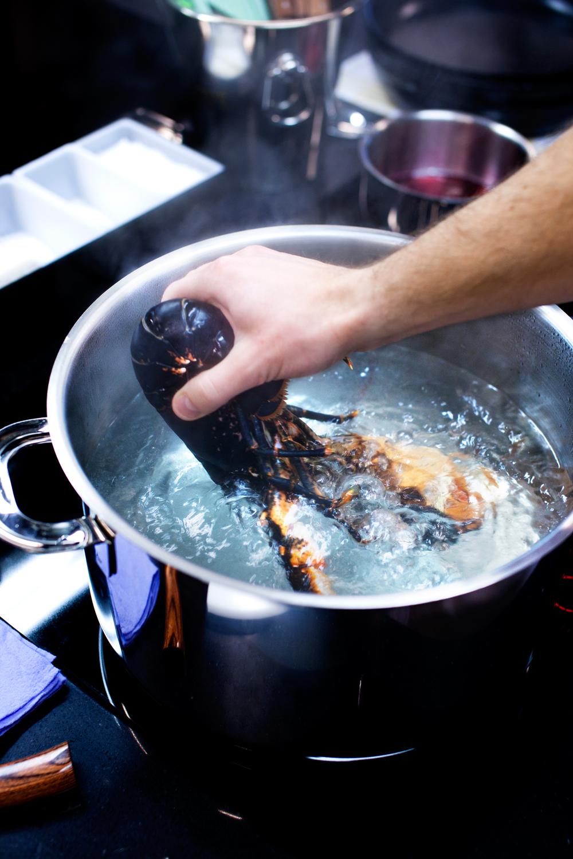 1. Legg hummeren i kokende vann. Vannet skal kun fosskoke når du slipper oppi hummeren. Deretter holder det med småkoking.