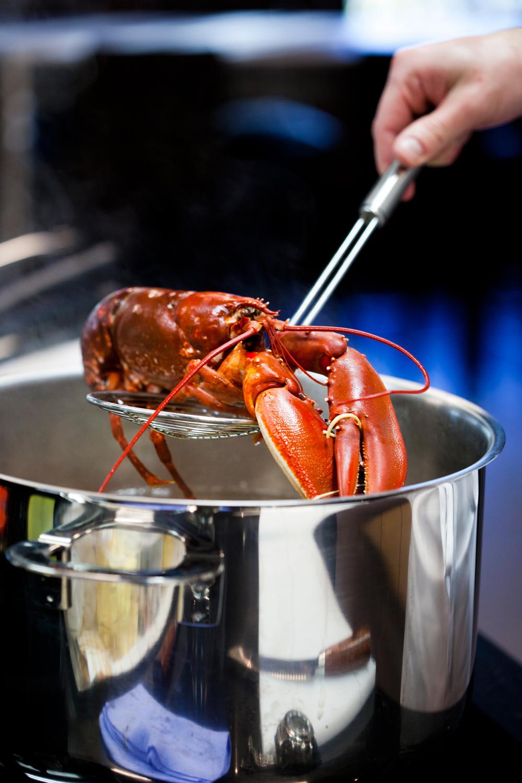 2. Løft ut hummeren etter anvist koketid. Se koketider til venstre.