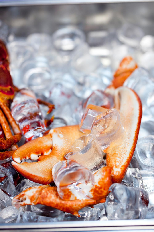 3. Etter koking legges hummeren opp ned i isbiter til rask avkjøling. Den legges opp ned for å beholde all den gode smaken.