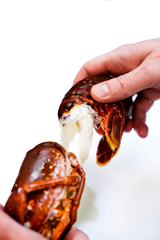 1. Koker du hummeren til steking (se siden til venstre) skal du avkjøle den og skrelle den som du gjør med en reke.