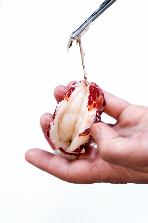 5. Fisk ut tarmen med en kjøkkenpinsett