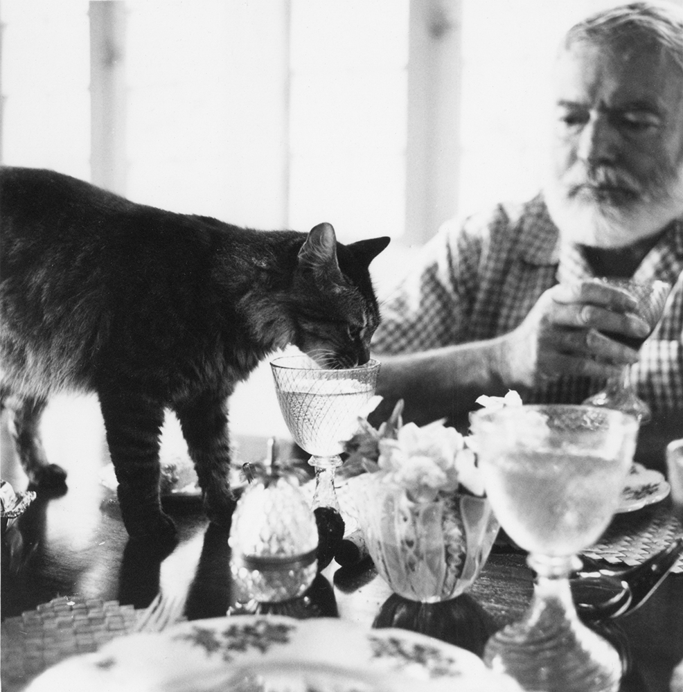 Ernest Hemingway sharing a glass of water with his cat.