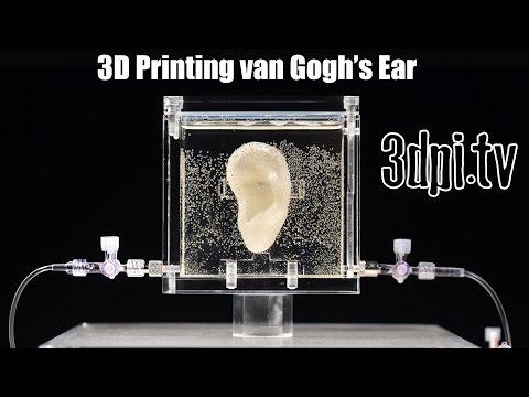 5 Van Gogh's ear 3.jpg