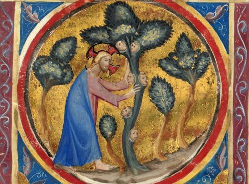 god planting the garden of eden Bible historiée toute figurée' Naples ca 1350.jpg
