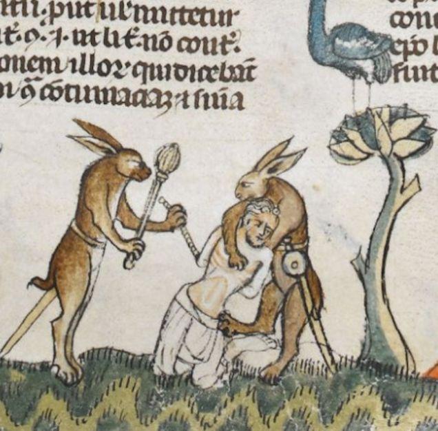 killer rabbits.jpg