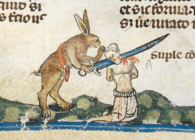 killer rabbits 2.jpg