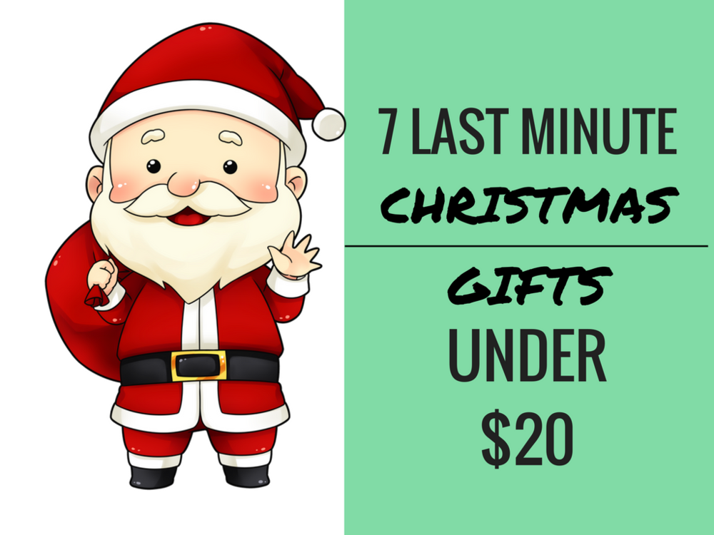 7 LAST MINUTE CHRISTMAS GIFTS UNDER $20