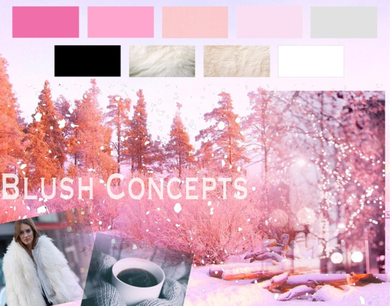 Fashion Illustration Final Project -