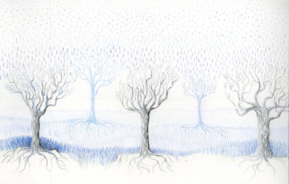 Raintrees