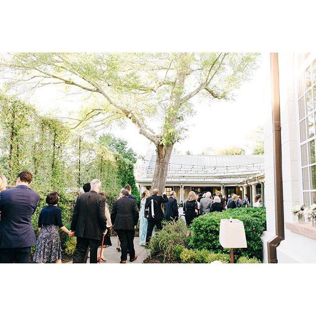 It's a beautiful evening for cocktail hour in the courtyard. Time to celebrate our bride & groom! Photo: @sarabeephoto. . . . #colemanhall #colemanchapel #weddingreception #cocktailhour #outdoorwedding #weddingguests #charlestonwedding #chswedding #courtyardparty #celebrate #newlyweds #weddingday
