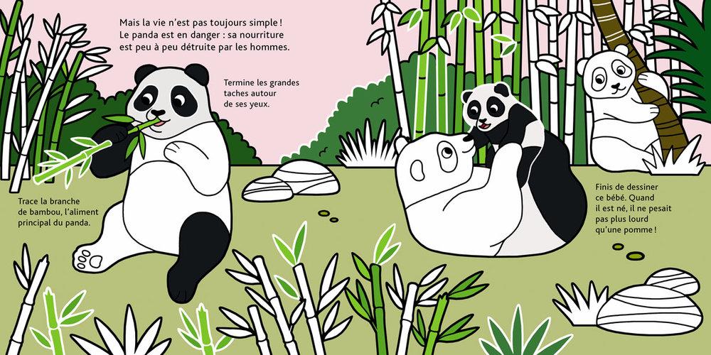 BEBES_ANIMAUX pandas.jpg