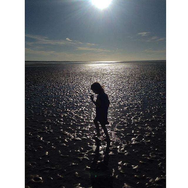 'Bella' #lowtide #skaket beach #capecod  #silhouette