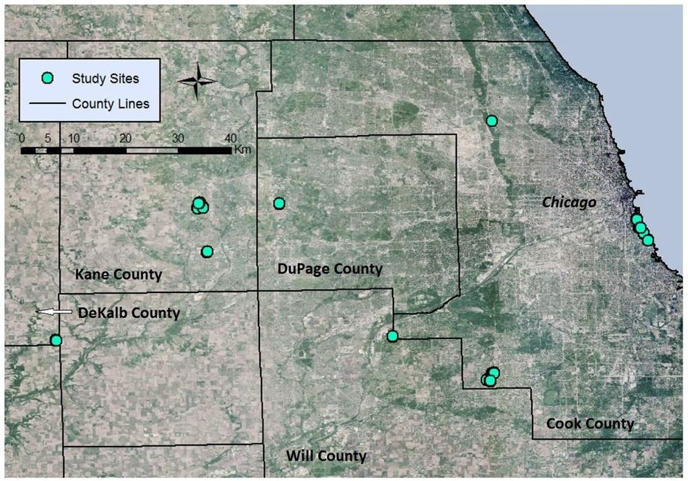 Figure 1. Map of Chicago region restored prairie study sites. All prairies were restored by a single ecological restoration firm, but are managed by a variety of public and private entities. Clusters of study sites represent prairies restored at different times with different seeding lists, making them viable as separate sites.