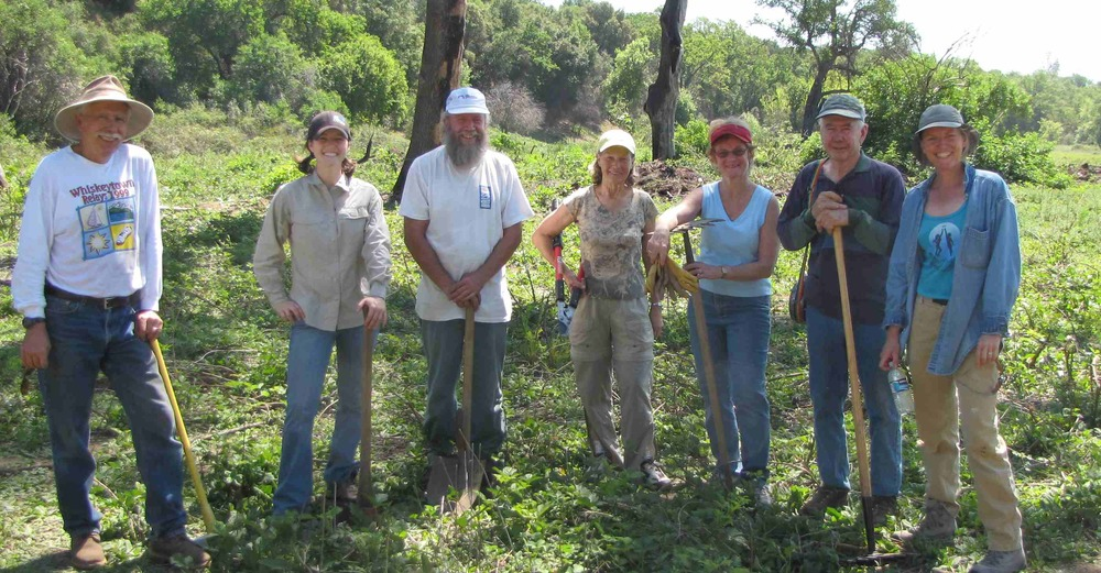 Volunteers on the Stewardship Team participate in a cleanup