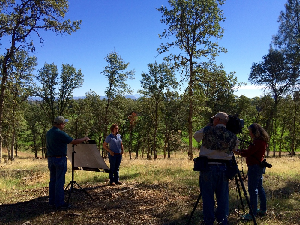 Jenna Brazil from NRCS talks about the oak woodlands on Sandy's property