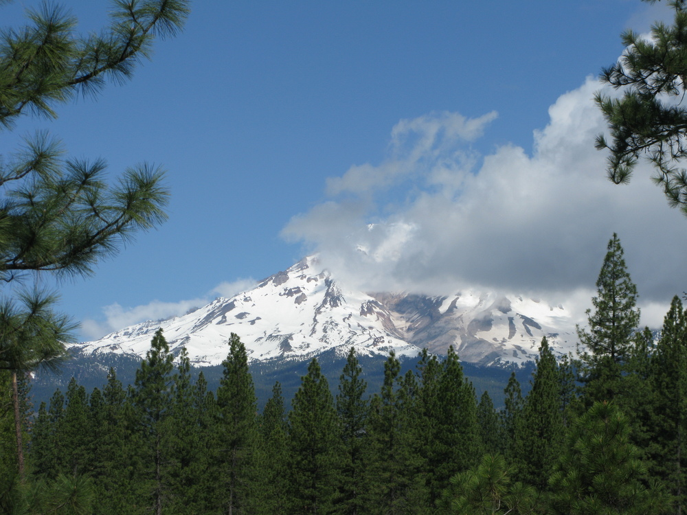 Mount Shasta by Egon Harrasser
