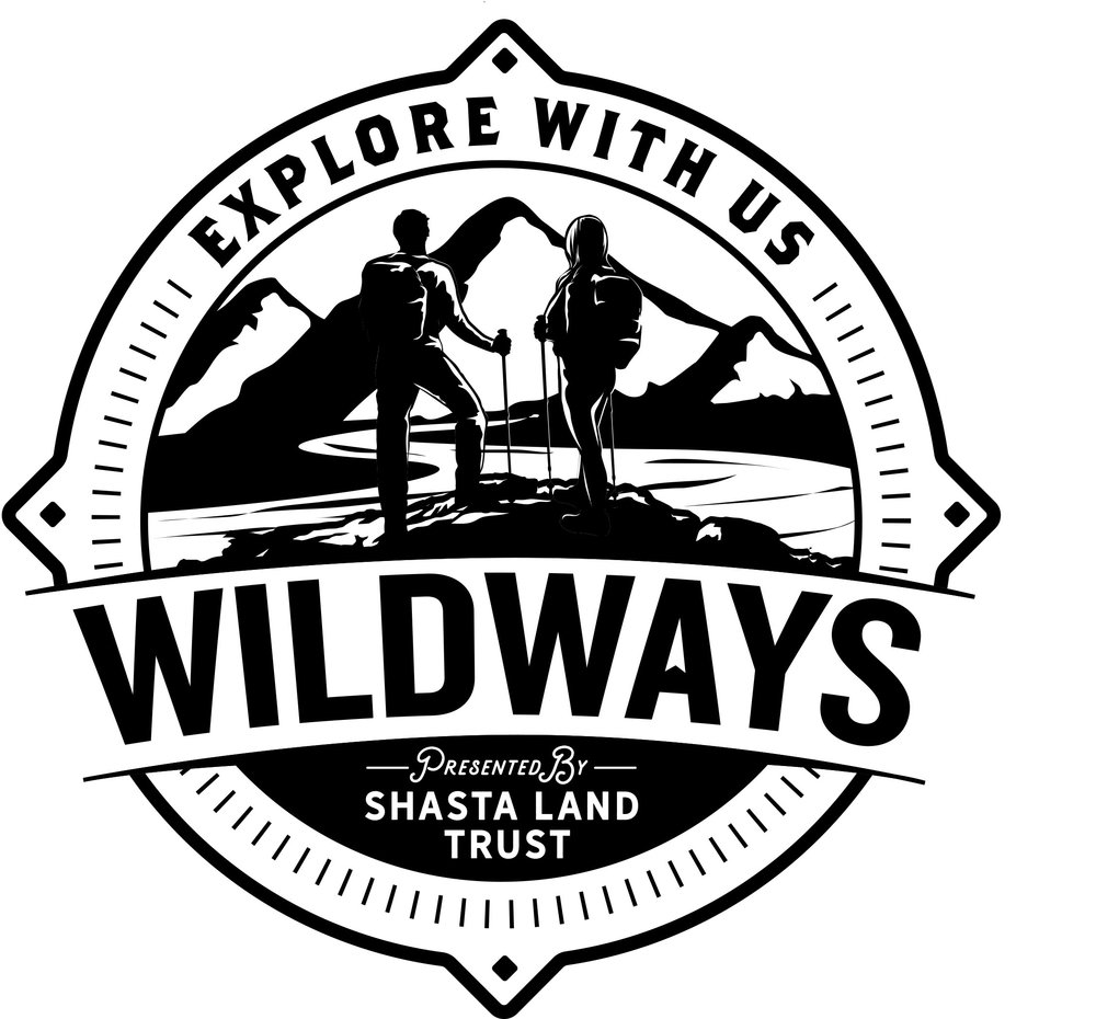 WILDWAYS_LOGO_KnockedOugt.jpg