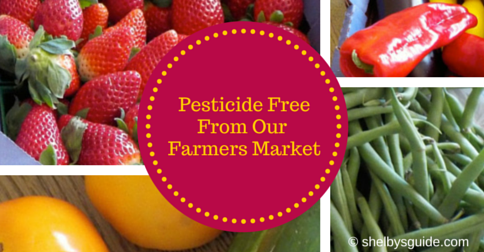 Pesticide Free From Our Farmers Market