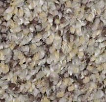 Martinica 00928 Aztec Wave Carpet
