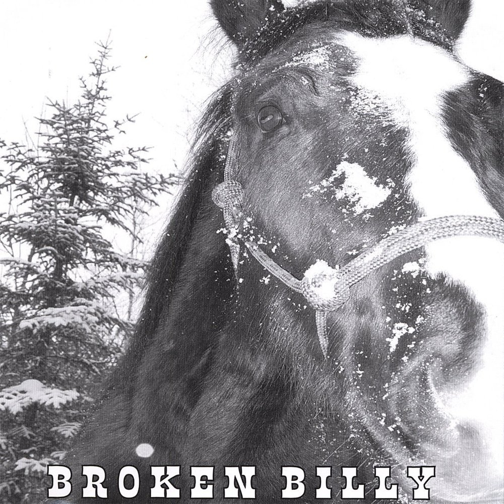 BROKEN BILLY  CD - $6.99