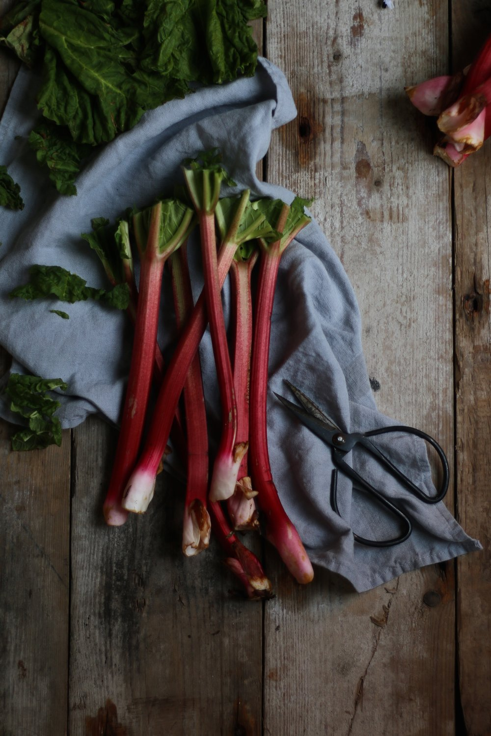 Rhubarb styled by Jette Virdi, food stylist based in London and Dublin