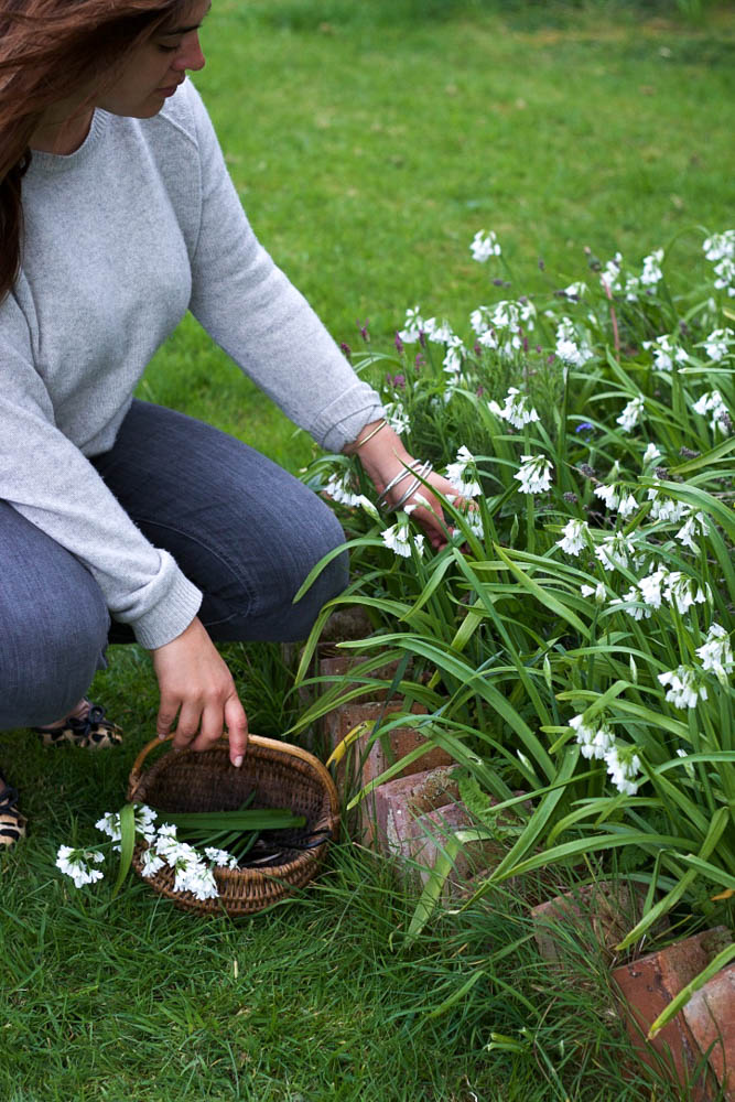 Jette Virdi, food stylist and photographer picking wild garlic. Based in London and Dublin