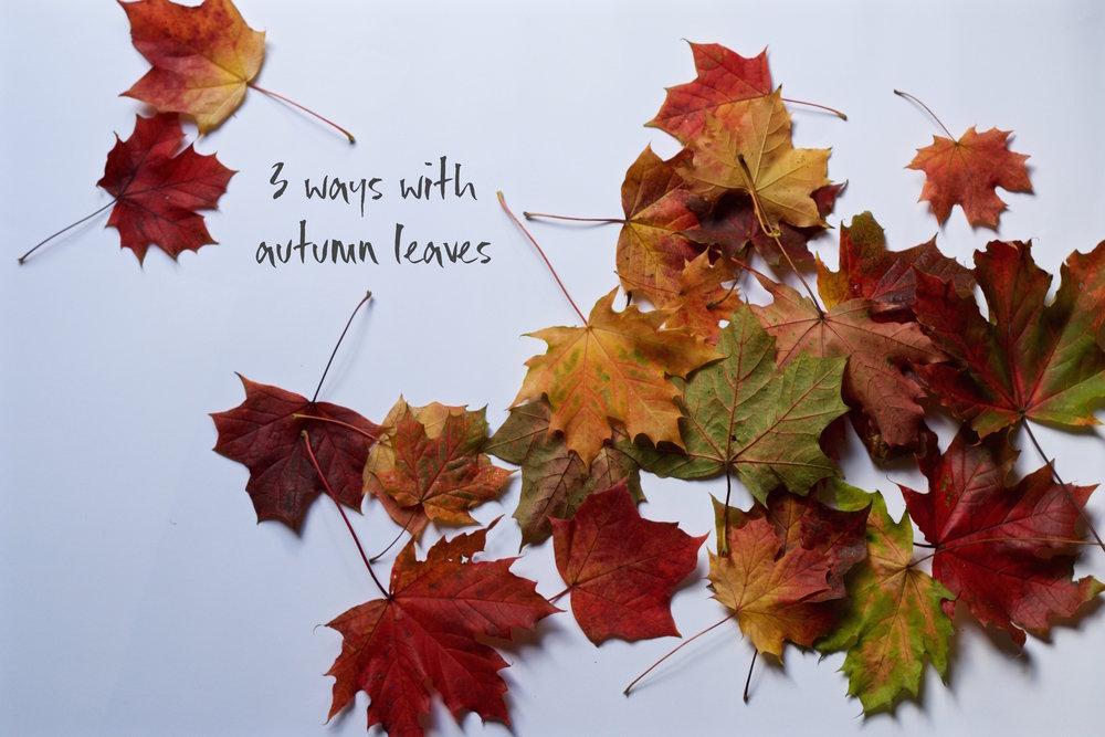 Autumn DIy - 11th October 2017