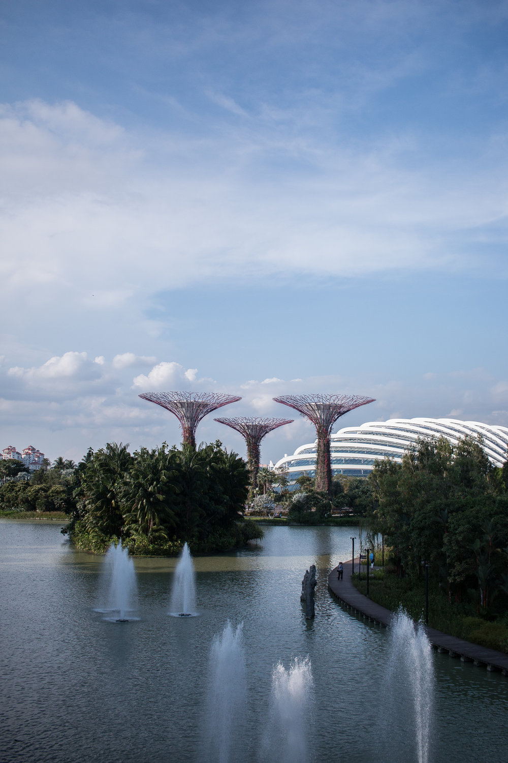 Gardens by the Bay shot by Jette Virdi