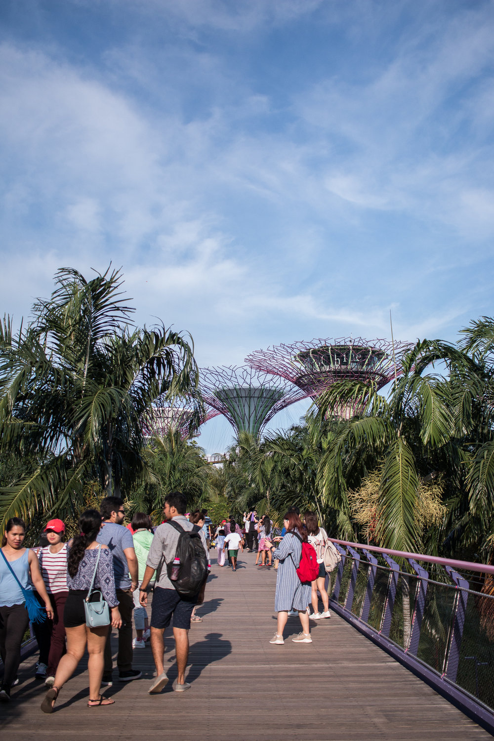 Jette explores Gardens by the Bay, Singapore