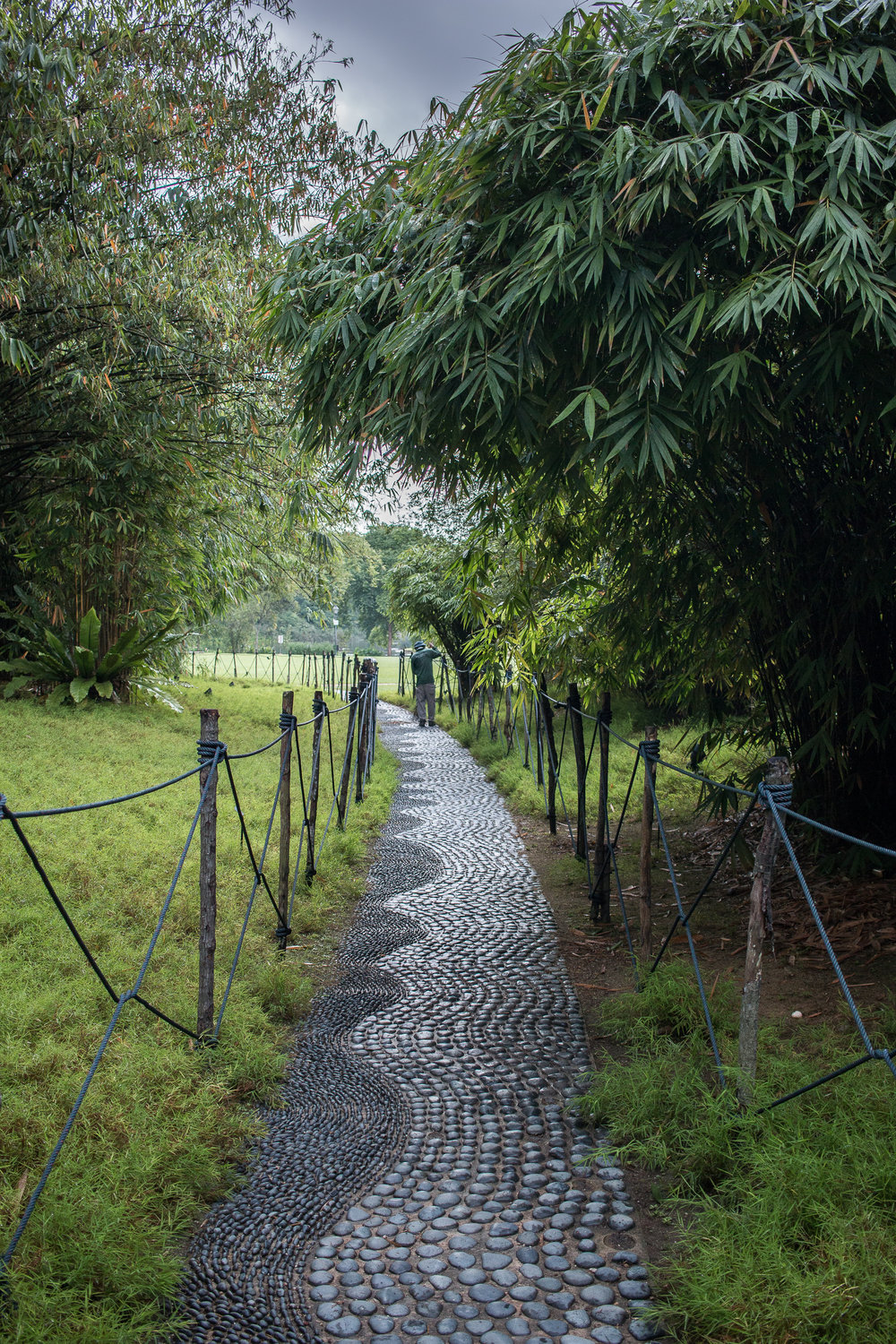 Pathways around the Botanical Gardens