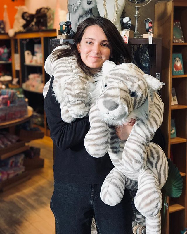 ❄️ #AllIWantForChristmas is the GORGEOUS Sacha Snow Tiger plush from @jellycat_official (available in BIG and REALLY BIG!) 😍 🎁 ✨ #staffpickoftheday #sachasnowtiger #jellycat #snowtiger #plush #giftsforher #christmasshopping #supportindependent #familyrunbusiness #independentretailer #shoplocal #arundel #sparksyard #livelikeus #giftlikeus