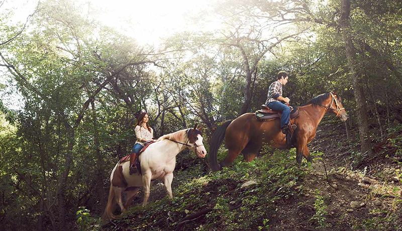 4 Texas Hotels for Horse Lovers    Forbes Travel Guide , Jan 12 2017