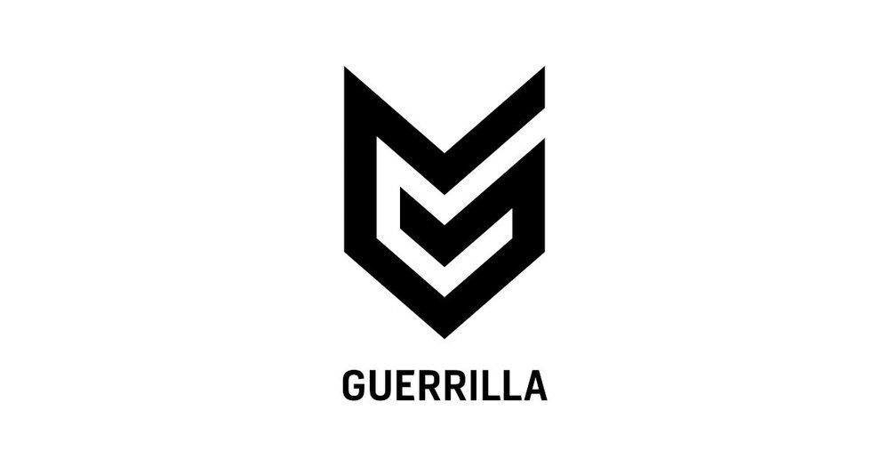 Senior Writer | Unannounced Project  Developed by Guerrilla Games | All details TBA