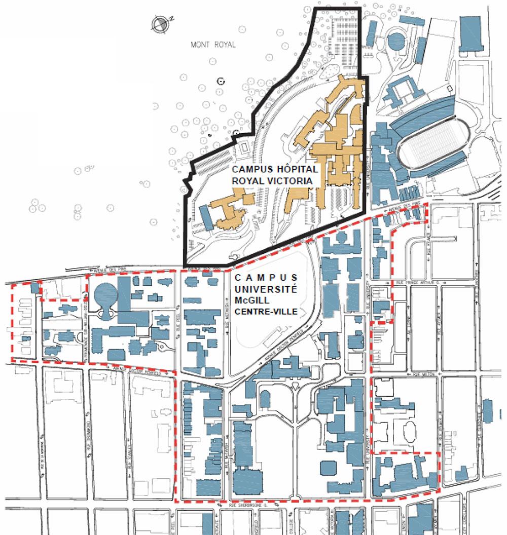 Image : Université McGill. Source : Université McGill.