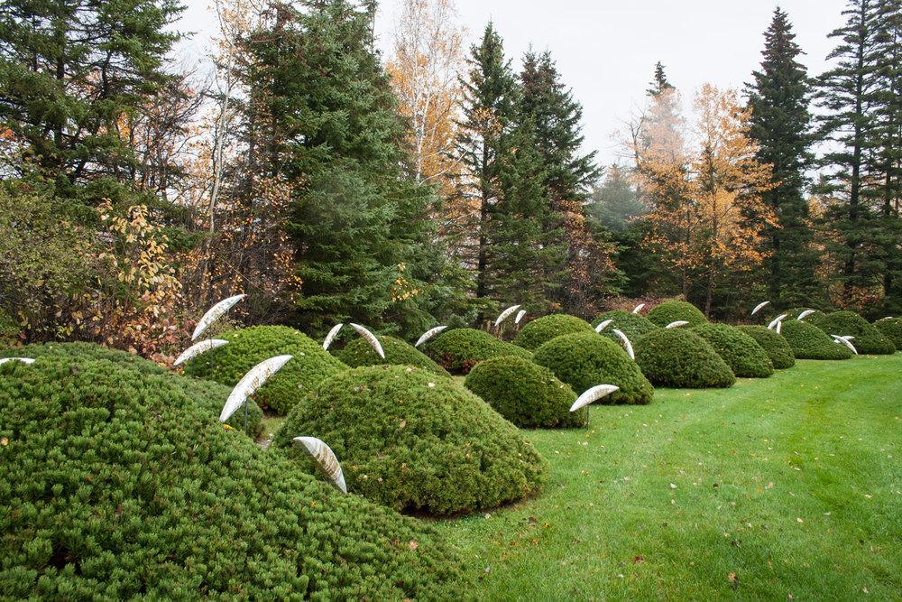 Photo : Marjelaine Sylvestre. Source : Jardins de Métis.