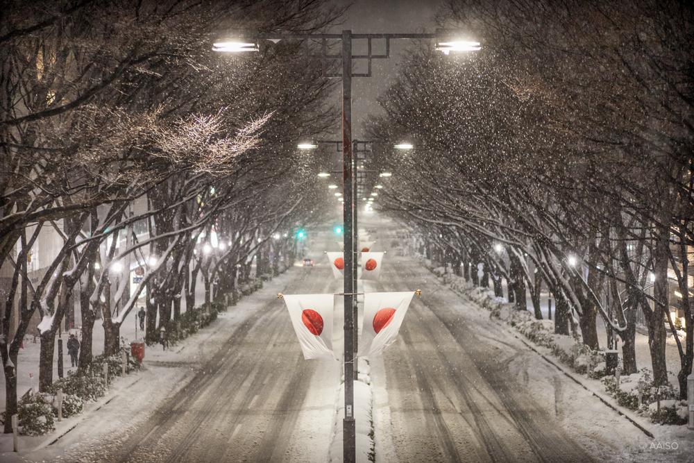 Quiet and snowy avenue in Omotesando, Tokyo