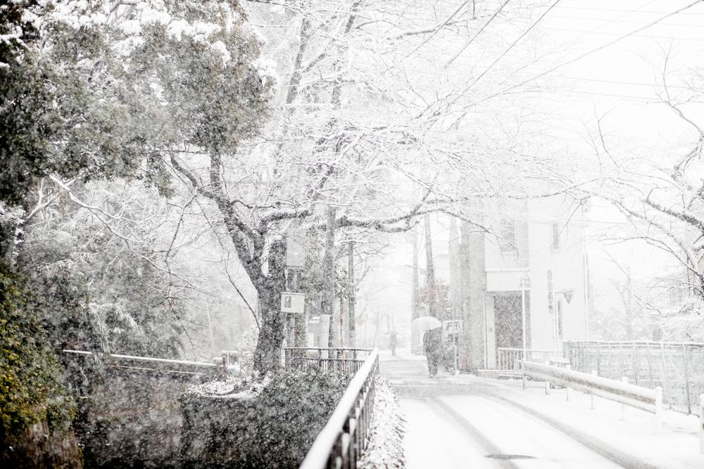 winterintokyo8358.jpg