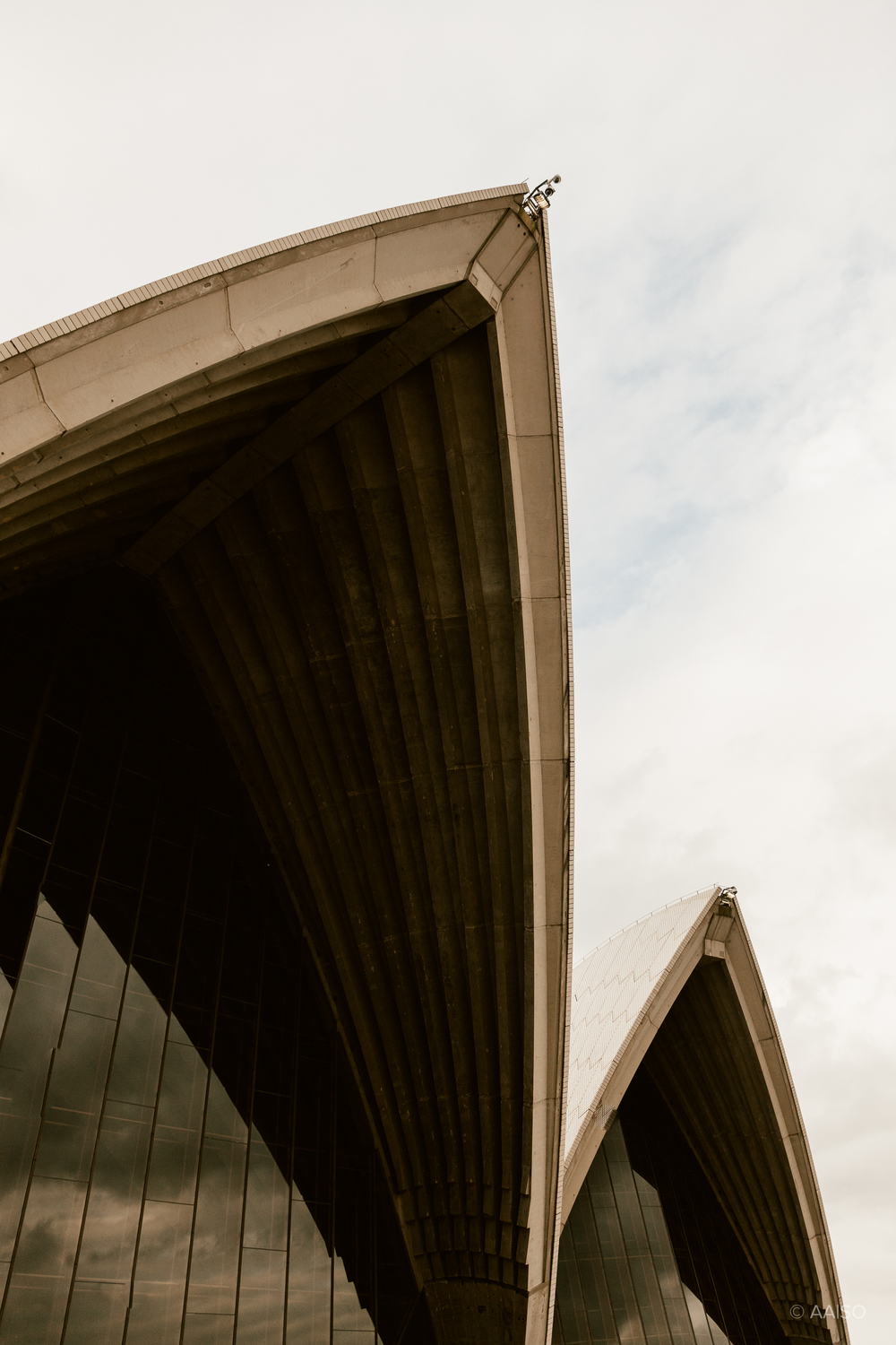The characteristic shapes of the Sydney Opera House