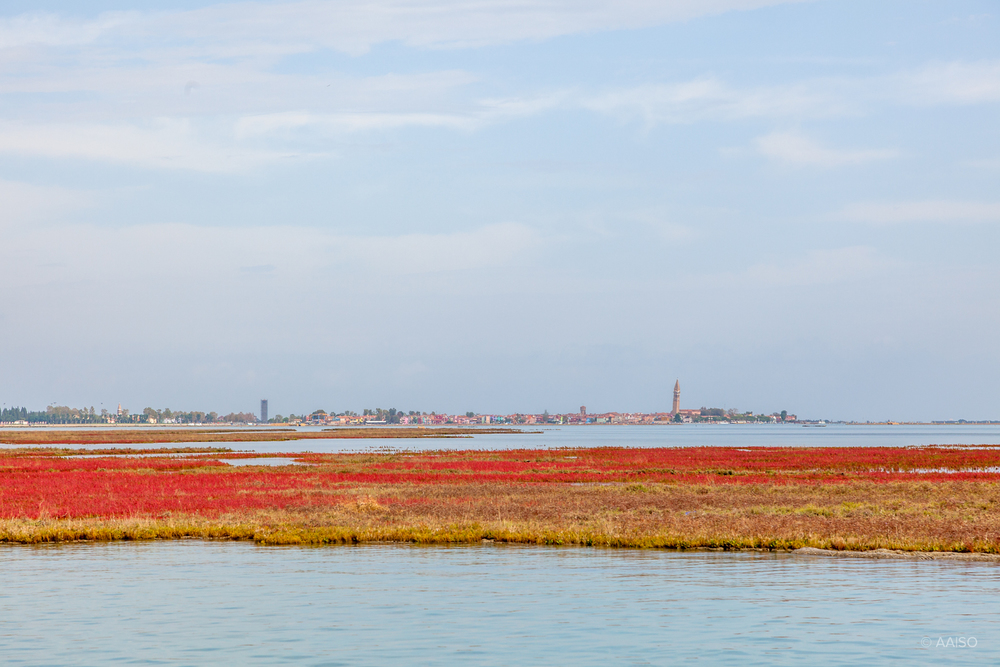 Approaching Burano, one of the islands in the Venetian Lagoon, k