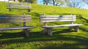 Park+Bench+1.jpeg