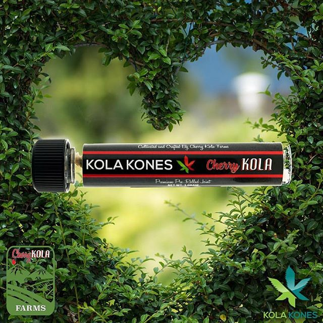 @kolakones @kola.kones 🍒 Check out our premium pre-rolls! 🍒🍌🍏🍊🍓🍇🍍🍑Comment if you have tried, and want to leave a review! #cherrykola #kolakones #cherrykolafarms #california #grownwithlove #sonomacounty #bayarea #beyourself #enjoylife #wehearthaters #kolacowboys #champion #winner #bayarea