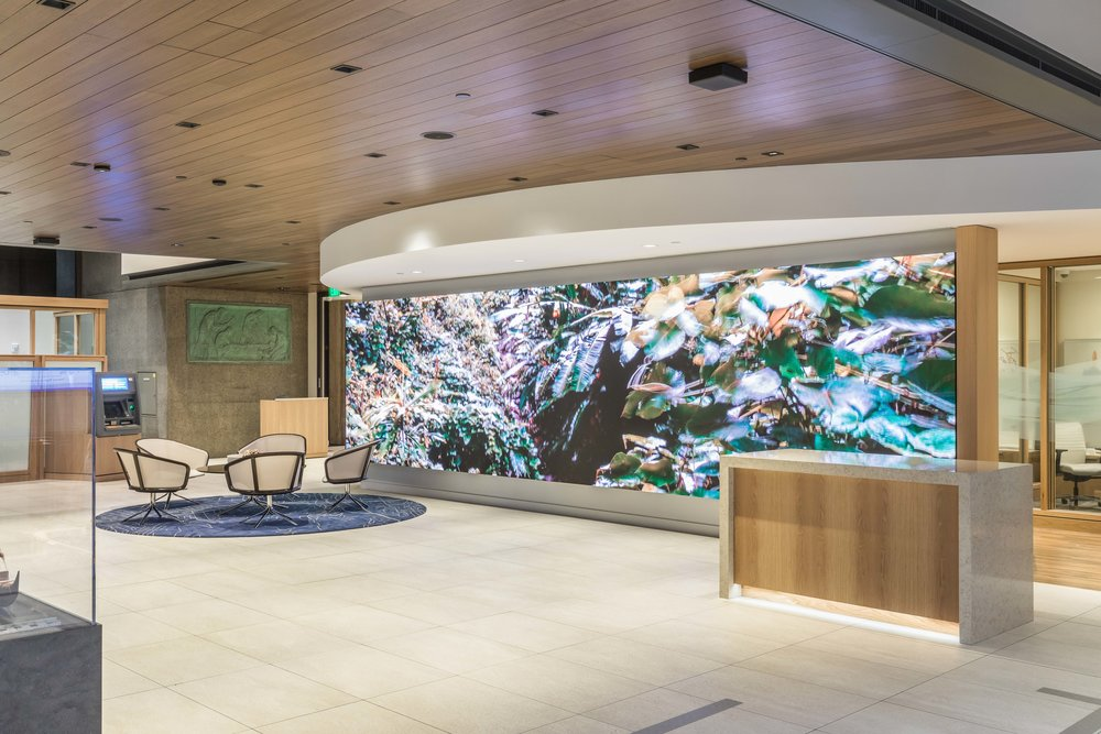 Client | F  ord AV Tech +  Bank Of Hawaii